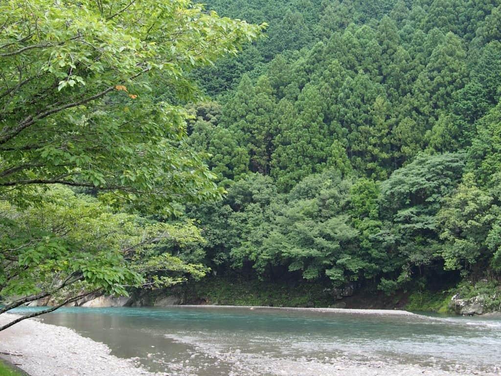 Nakahechi Trail Kumano Kodo